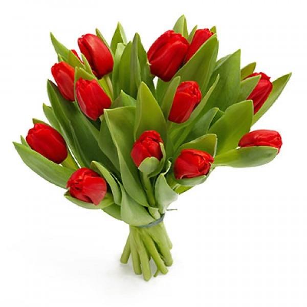 Bukiet 12 tulipanów czerwonych