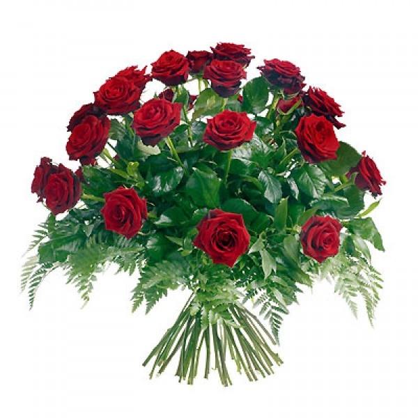 Bukiet 18 róż czerwonych