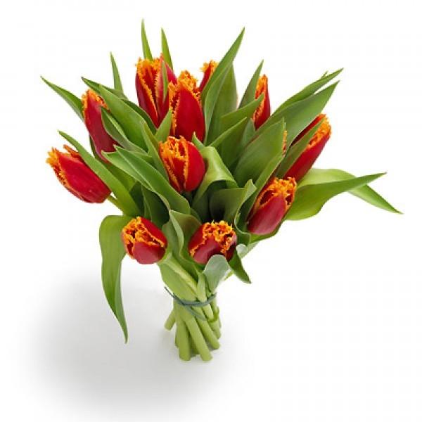 Bukiet 12 tulipanów czerwono żółtych