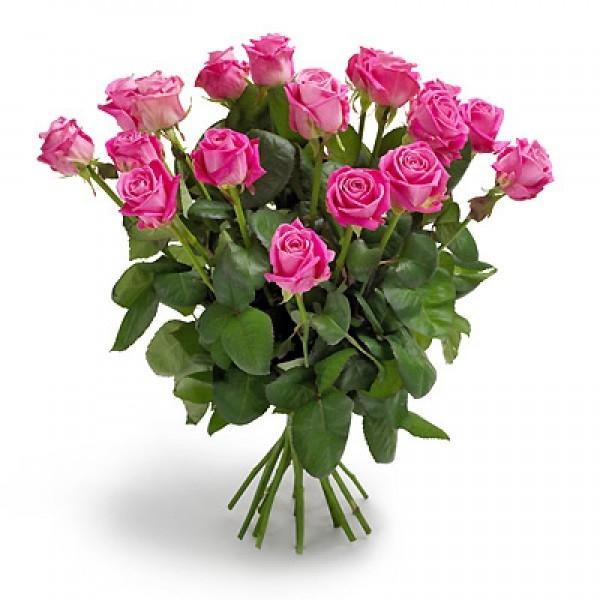 Bukiet 18 róż różowych